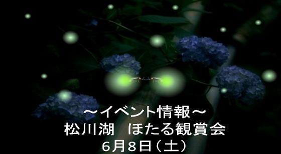 松川湖へほたるを見に行こう!~ほたる観賞会~