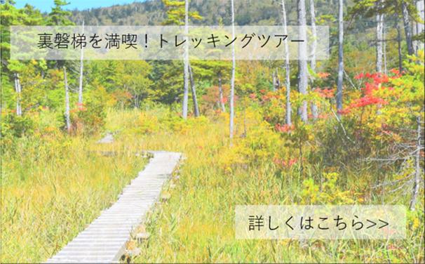 ヨカデミー早稲沢