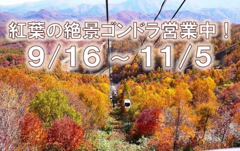 紅葉の絶景ゴンドラ