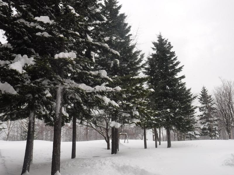 雪景色!!