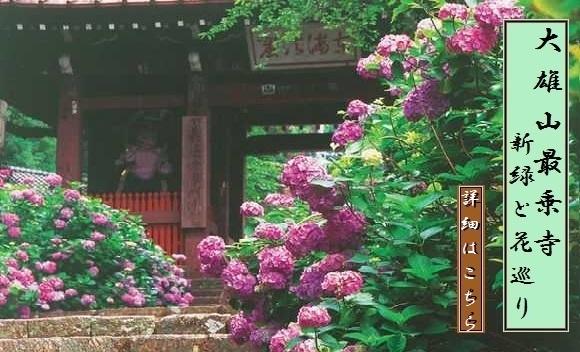 大雄山最乗寺 ~新緑と花巡り~