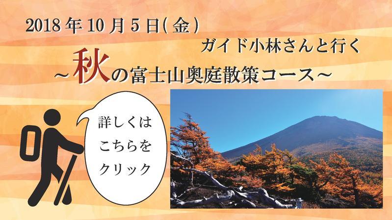 ガイド小林さんと行く~秋の富士山奥庭散策コース~