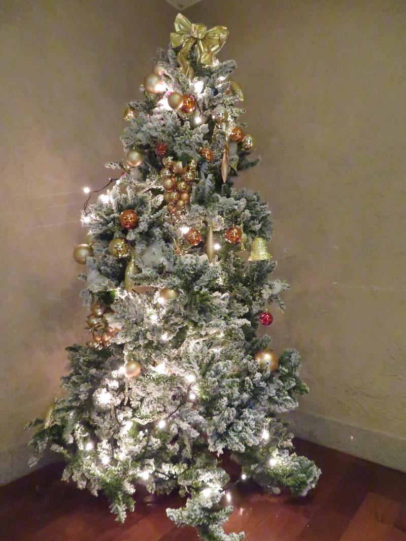 もうすぐクリスマス★