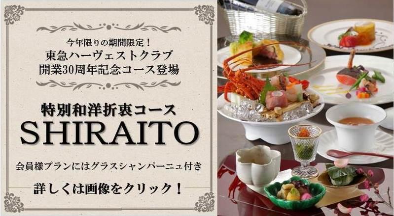 特別和洋折衷SHIRAITO