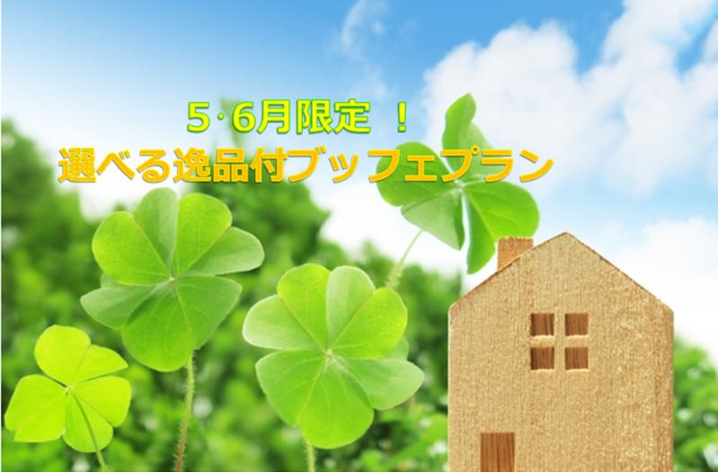 5・6月限定選べる逸品付シェフズ