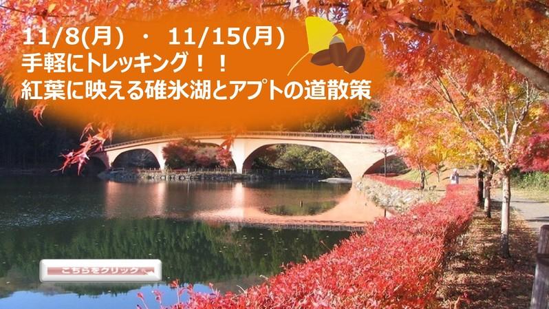 11/8(月)・11/15(月) 手軽にトレッキング!! 紅葉に映える碓氷湖とアプトの道散策