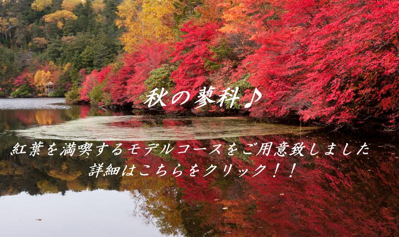 【秋】蓼科モデルコース