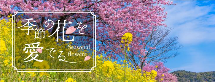季節の花を愛でる