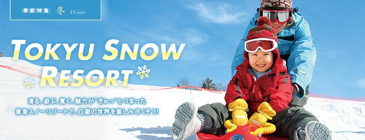 LP:TOKYU SNOW RESORT