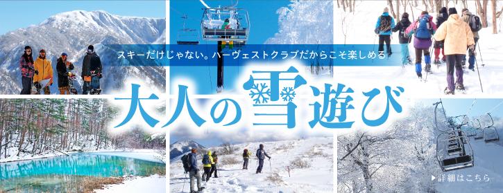 大人の雪旅